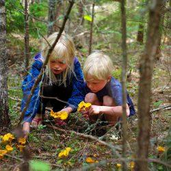 Odrastanje u Švedskoj. Izvor: Johan Willner/imagebank.sweden.se