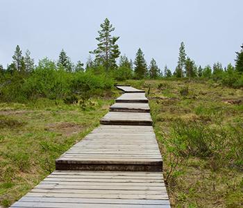 137575-Urho-Kekkonen-National-Park
