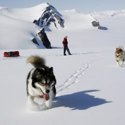 Skijanje sa psima, Kjepasset-Spitsbergen, Norveška. Izvor: Kristin Folsland Olsen - Visitnorway.com