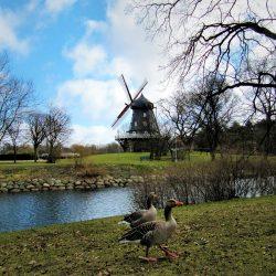 Kungsparken, Malmö. Izvor: Nordic Point