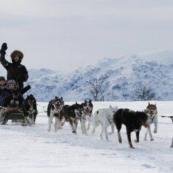 Vožnja psećom zapregom, Tromso
