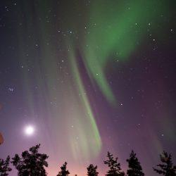 Polarna svjetlost, Laponija. Izvor: Lola Akinmade Åkerström/imagebank.sweden.se