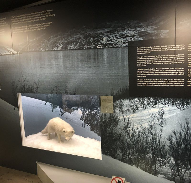 Muzej Arktikum, Rovaniemi. Izvor: Nordic Point